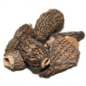 Dried Morel Mushrooms 4 oz.